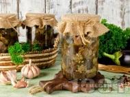 Домашен маринован патладжан с чесън, оцет и магданоз в бурканчета за зимата (зимнина)